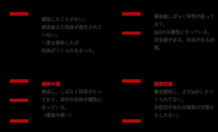 抗体検査の結果の見方